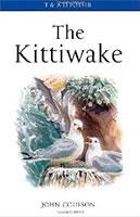 TheKittiwake