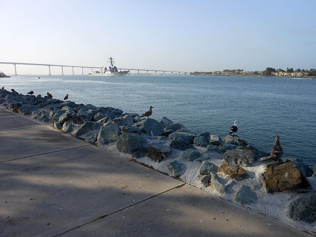 San Diego, a nice place to relax and and enjoy the local gulls.