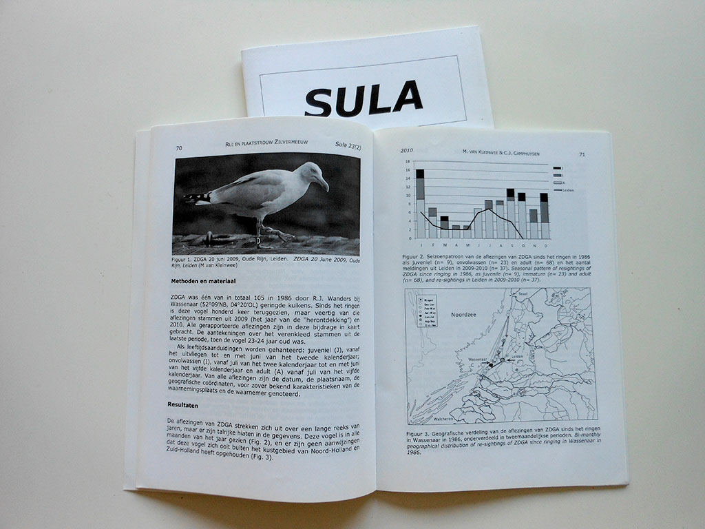 SULA-article