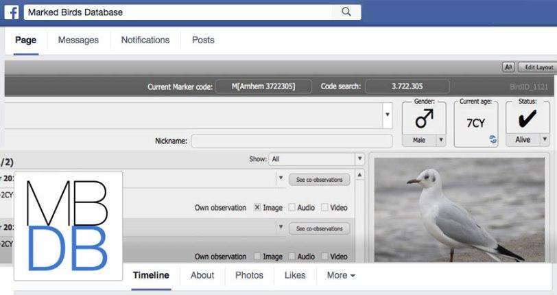 mbdb-on-facebook