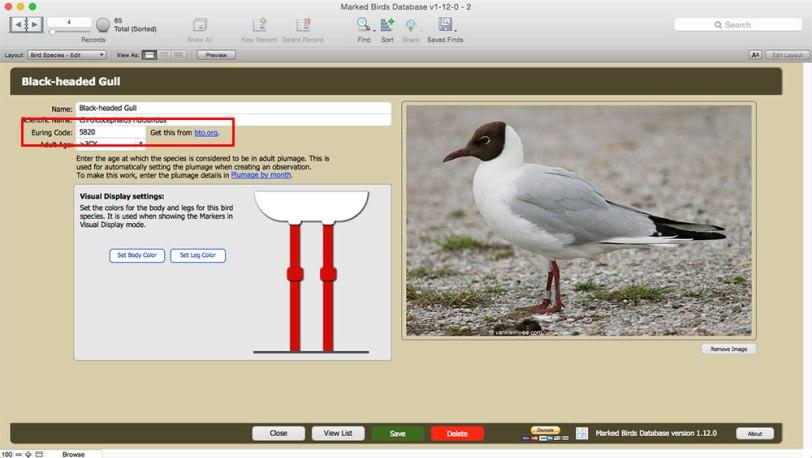 bird-species-euring-code