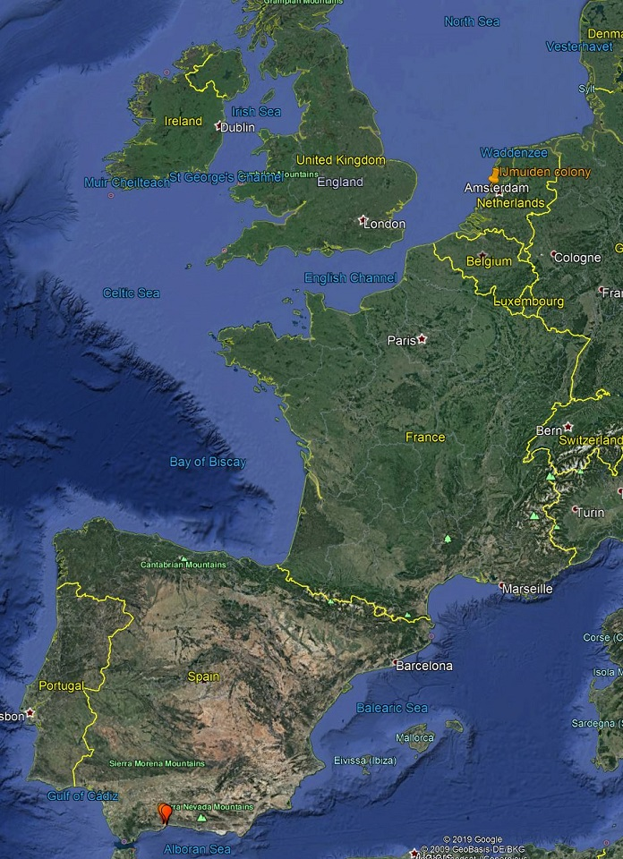 YCXJ-5952-Malaga-Spain-January-2020-2