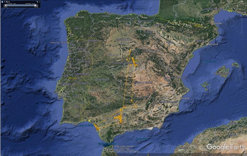 YCZN 5942 Spain March 2020.jpg